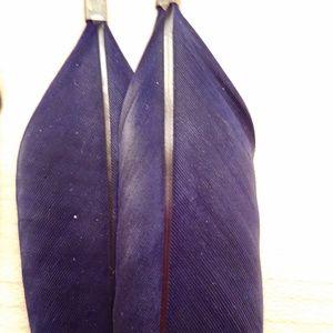 Navy Blue Feather Earrings